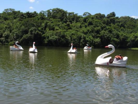 Foto de pedalinhos no lago do Parque da Cidade.