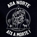 ASA NORTE DETALHE (1)
